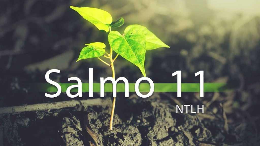 Salmo 11